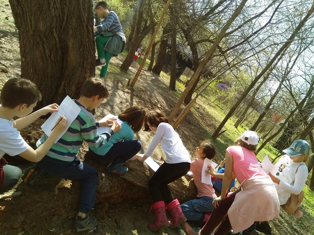 esl environment activities environmental issues eco English Earth day activities