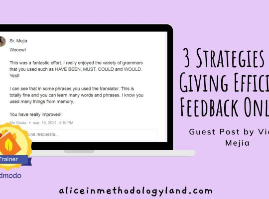 aliceinmethodologyland.com 3 Strategies for Giving Efficient Feedback: Guest Post by Victor Mejia